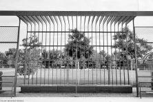hafenpark-002-sw