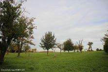 lohrberg-113